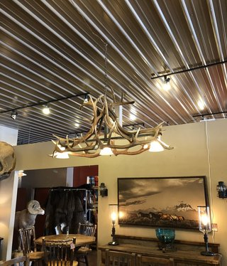 Fish Elk Chandelier with 3 down lights