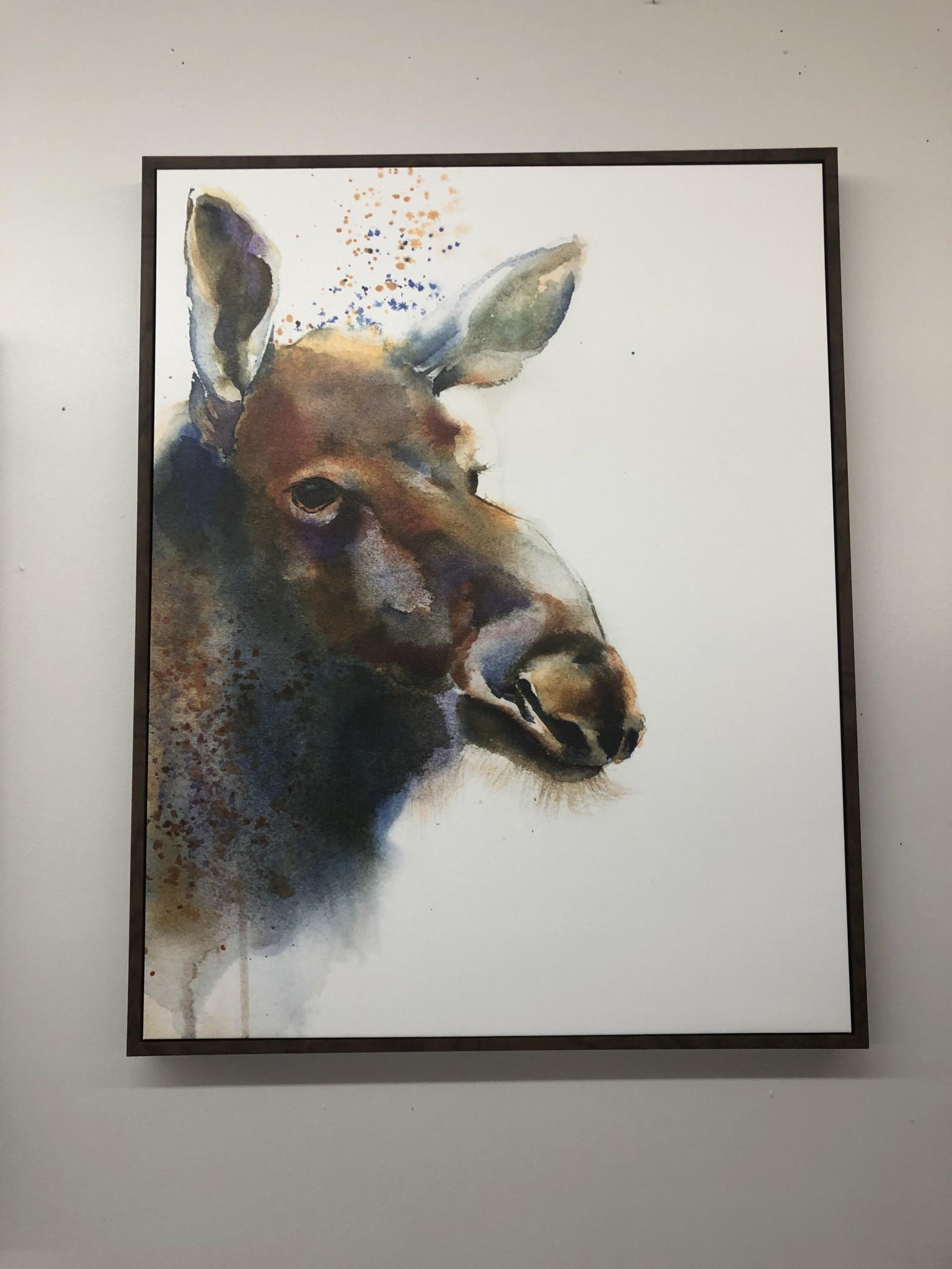TAC Moose  (No Antlers)