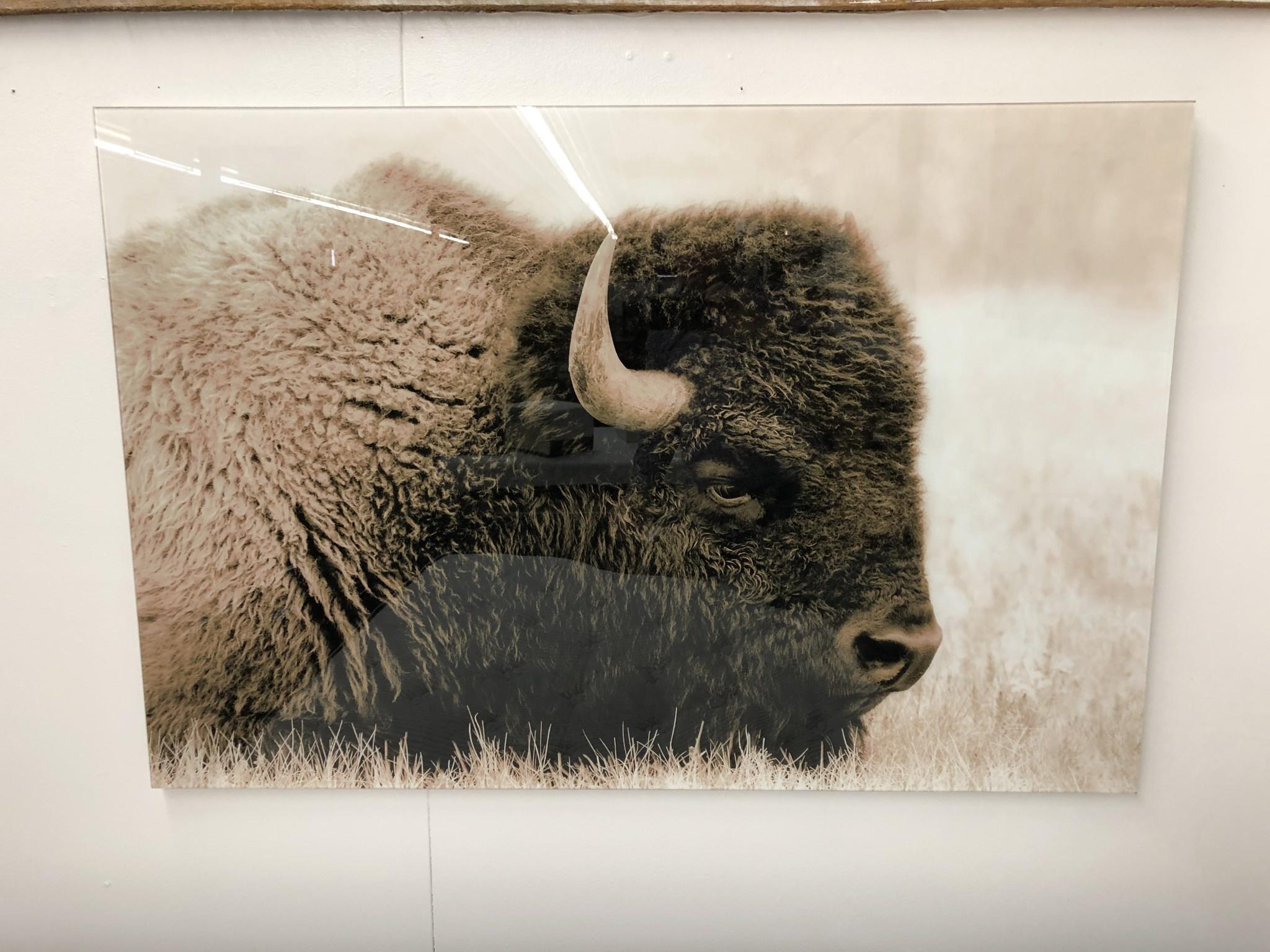 Prestige Arts Buffalo    220152KAA3248