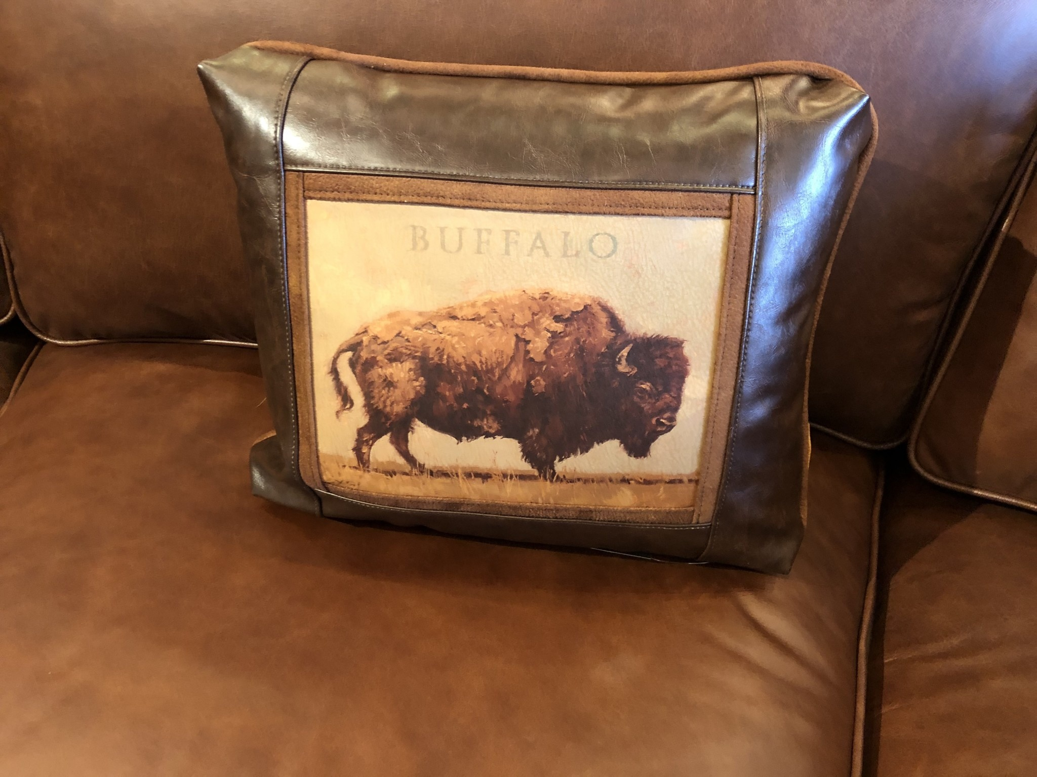 Sweetwater Trading Co Buffalo Pillow