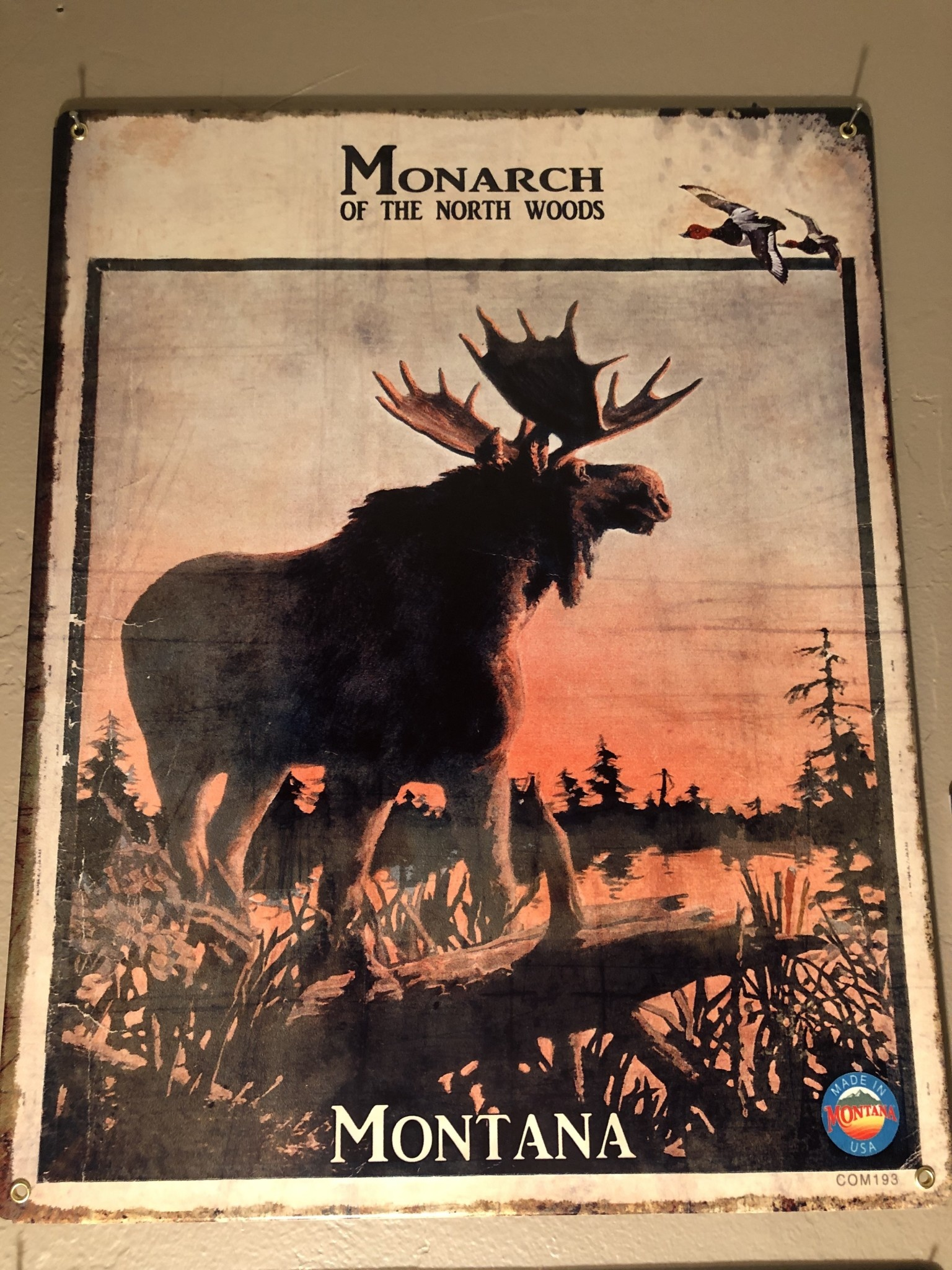 Classic Outdoor Magazines #20 Monarch Moose 12x15 Metal Sign