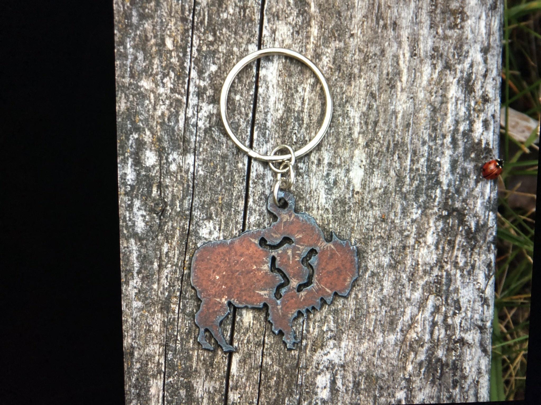 cool water jewelry KC9 Buffalo Charm Key Ring