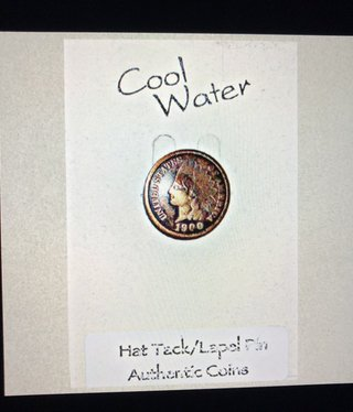 cool water jewelry LP3 Lapel Pin:Indian Head Penny