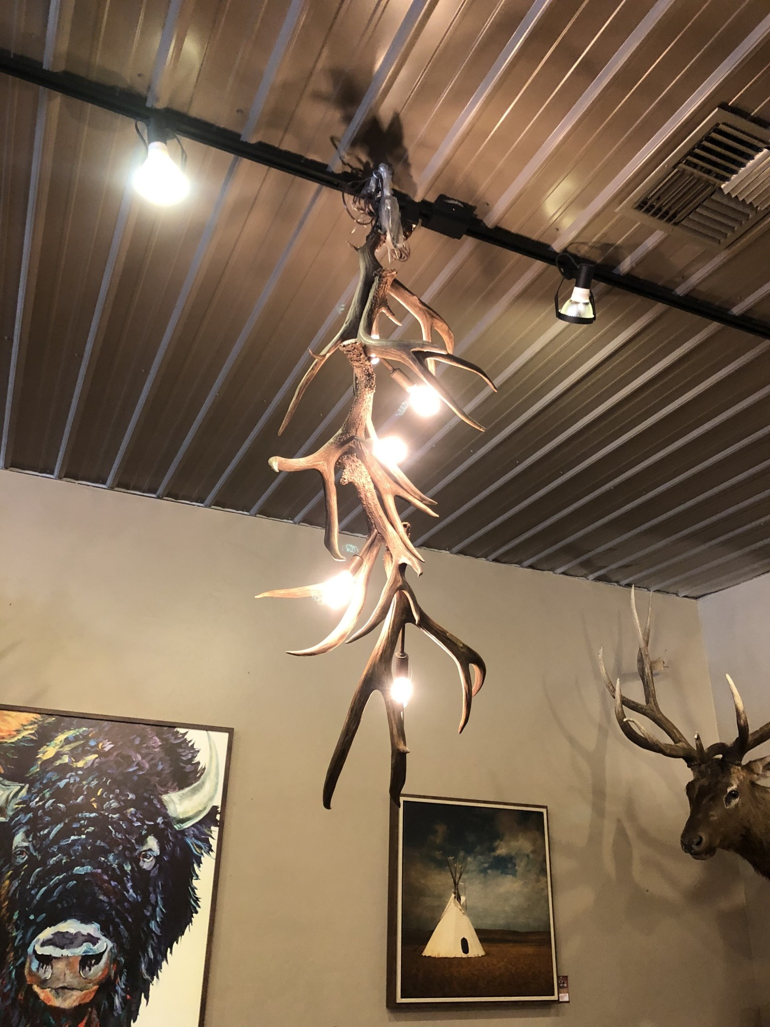 Fish Muledeer Chandelier