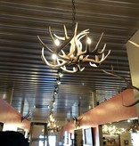 Fish 5 Light Whitetail Chandelier