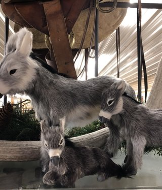 Gaucho Small Donkey