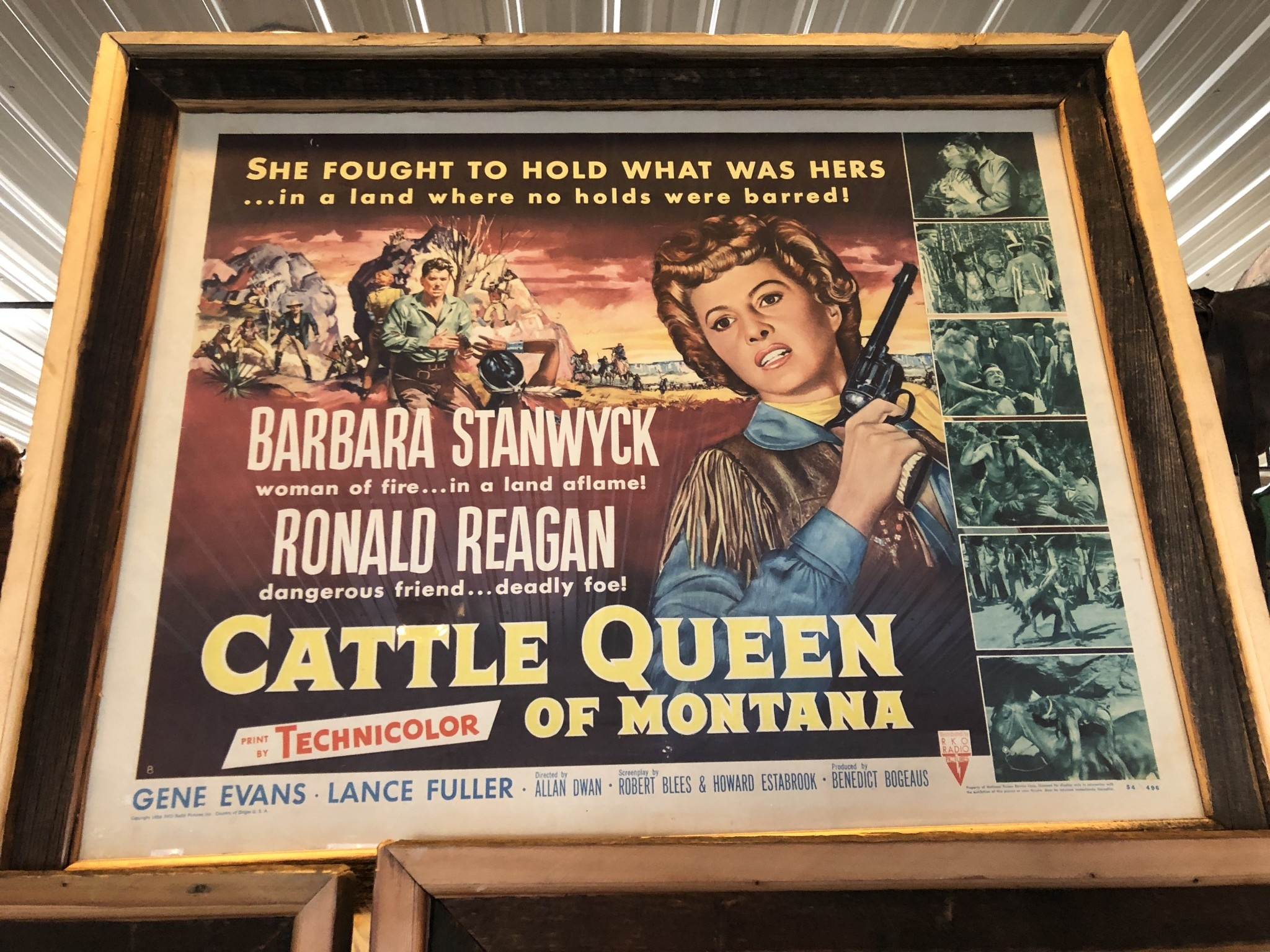 """Jerry Curtis """"Cattle Queen of Montana"""" Old Movie Poster Art - 32x26"""