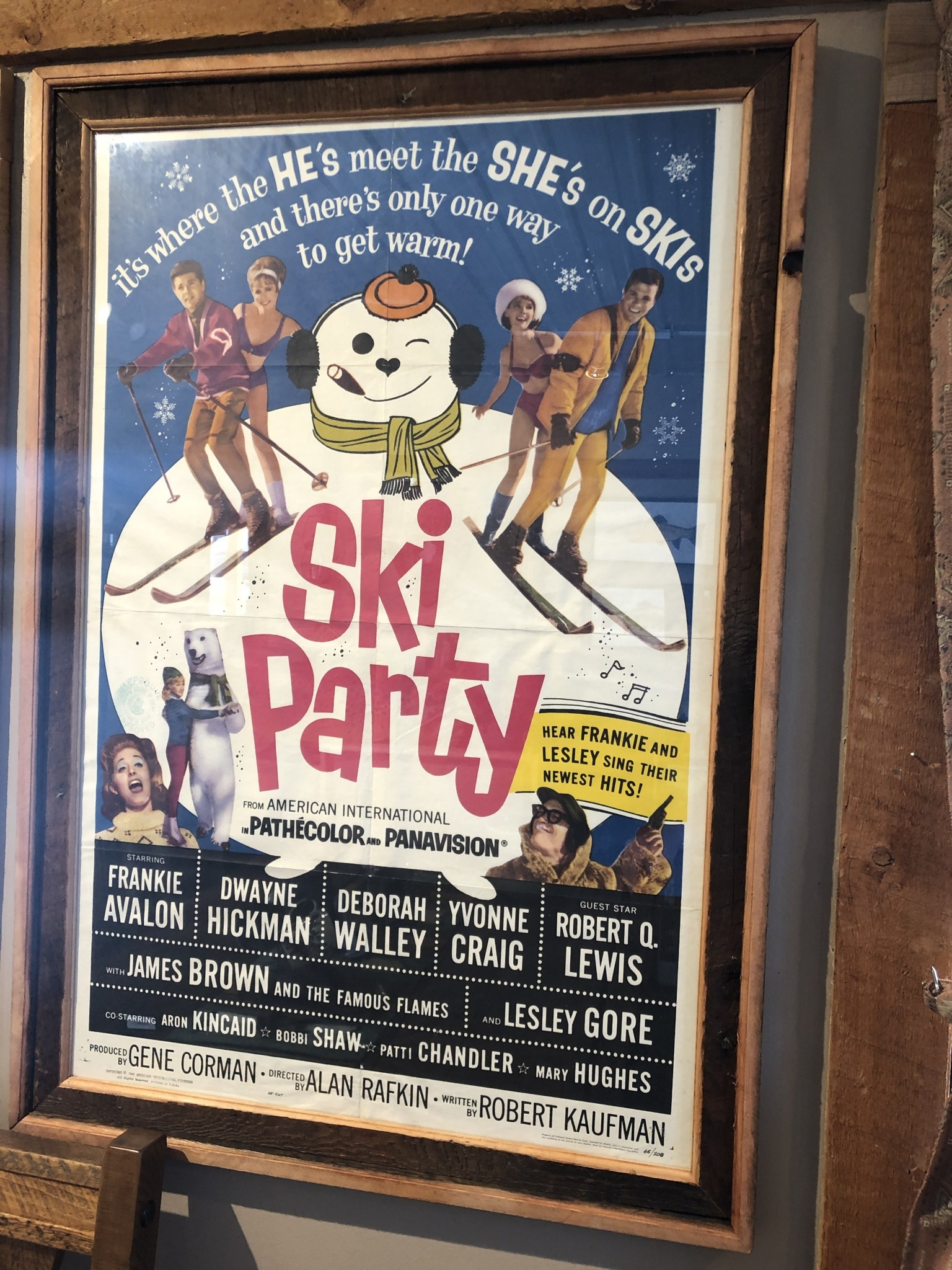 """Jerry Curtis """"Ski Party"""" Old Movie Poster Art - 31x44.5"""