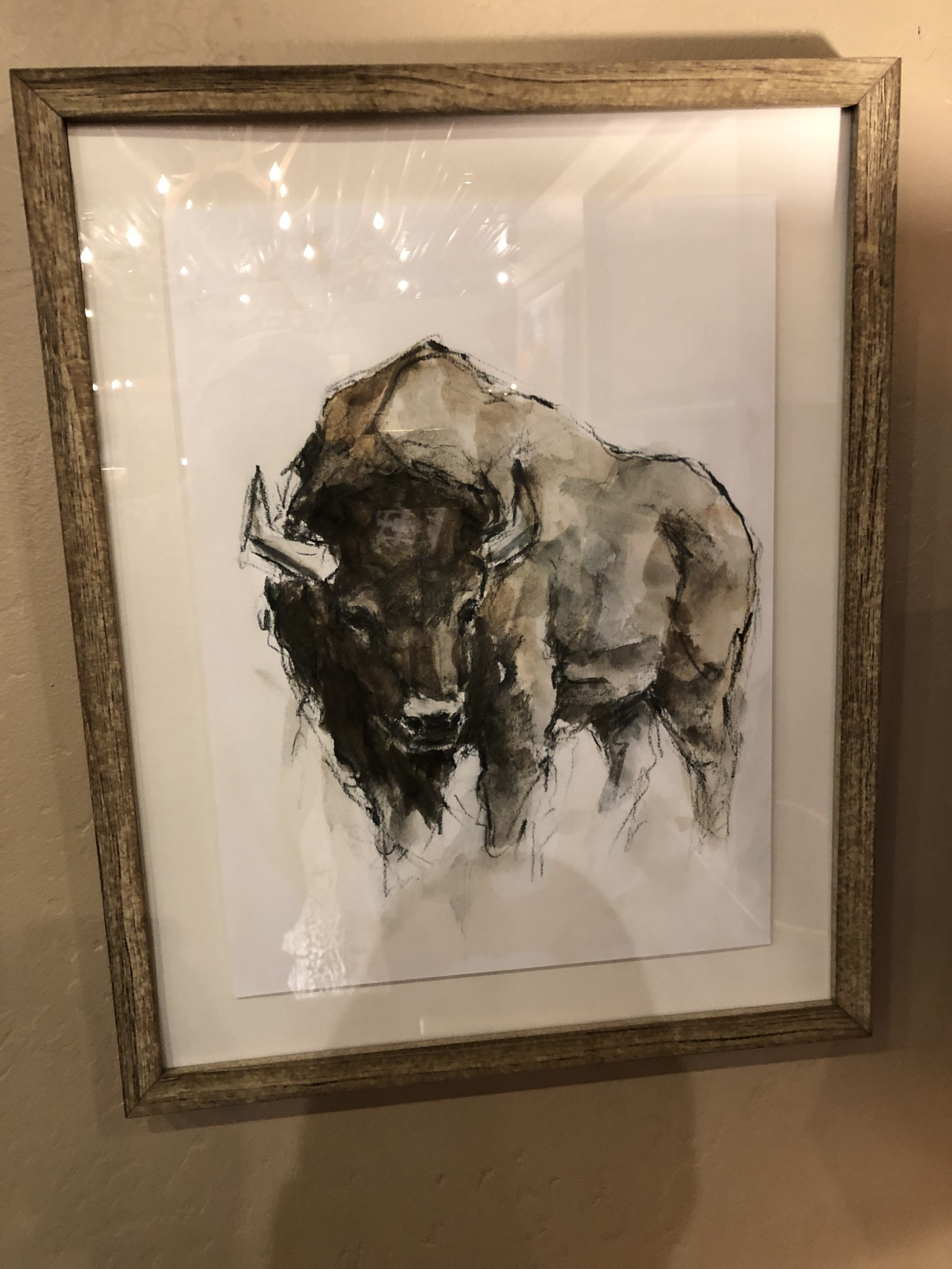 TAC American Buffalo II