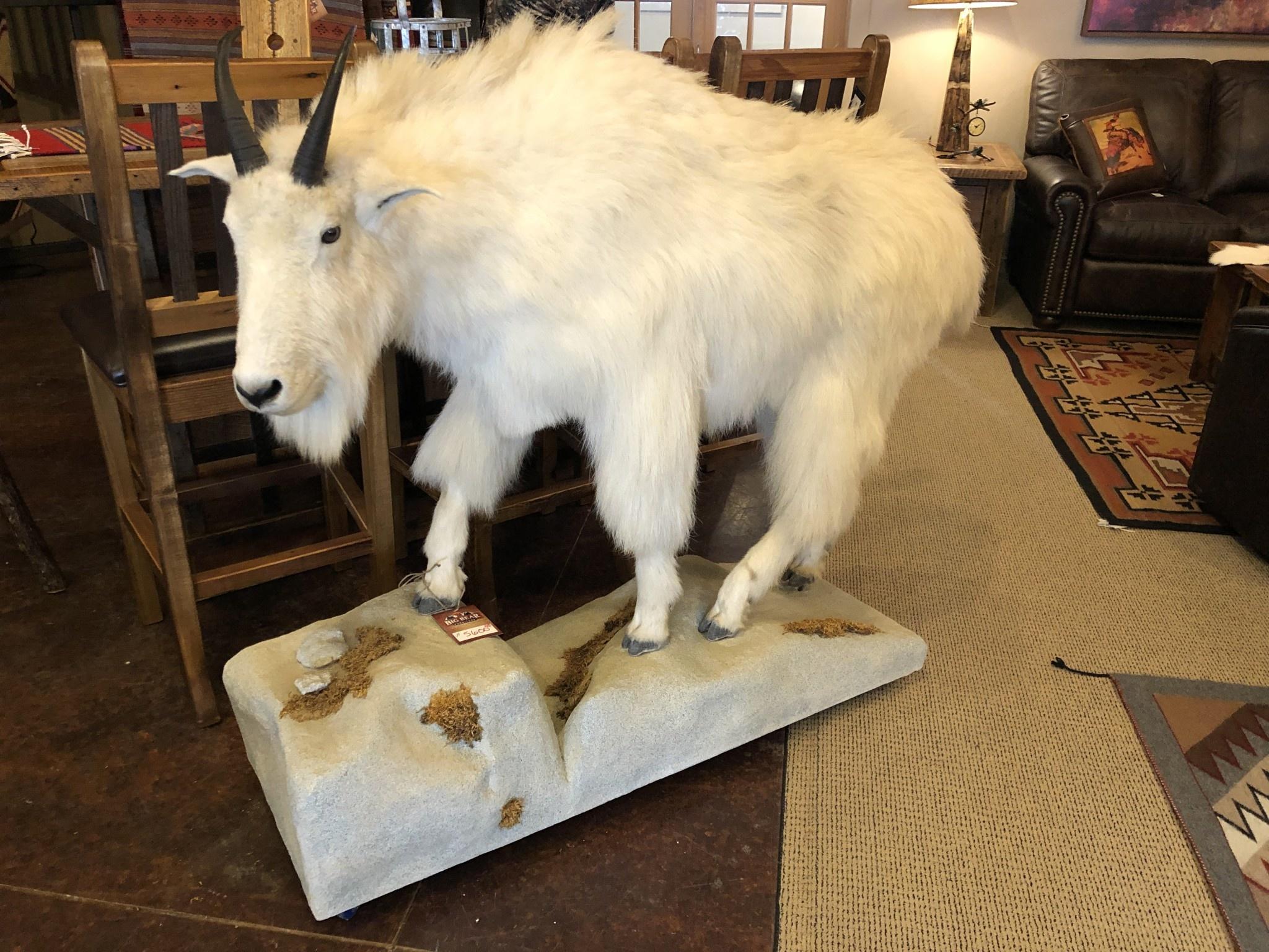 Fish Mountain Goat Floor Mount
