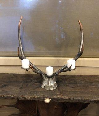 Fish Elk Head Candle (3) Holder