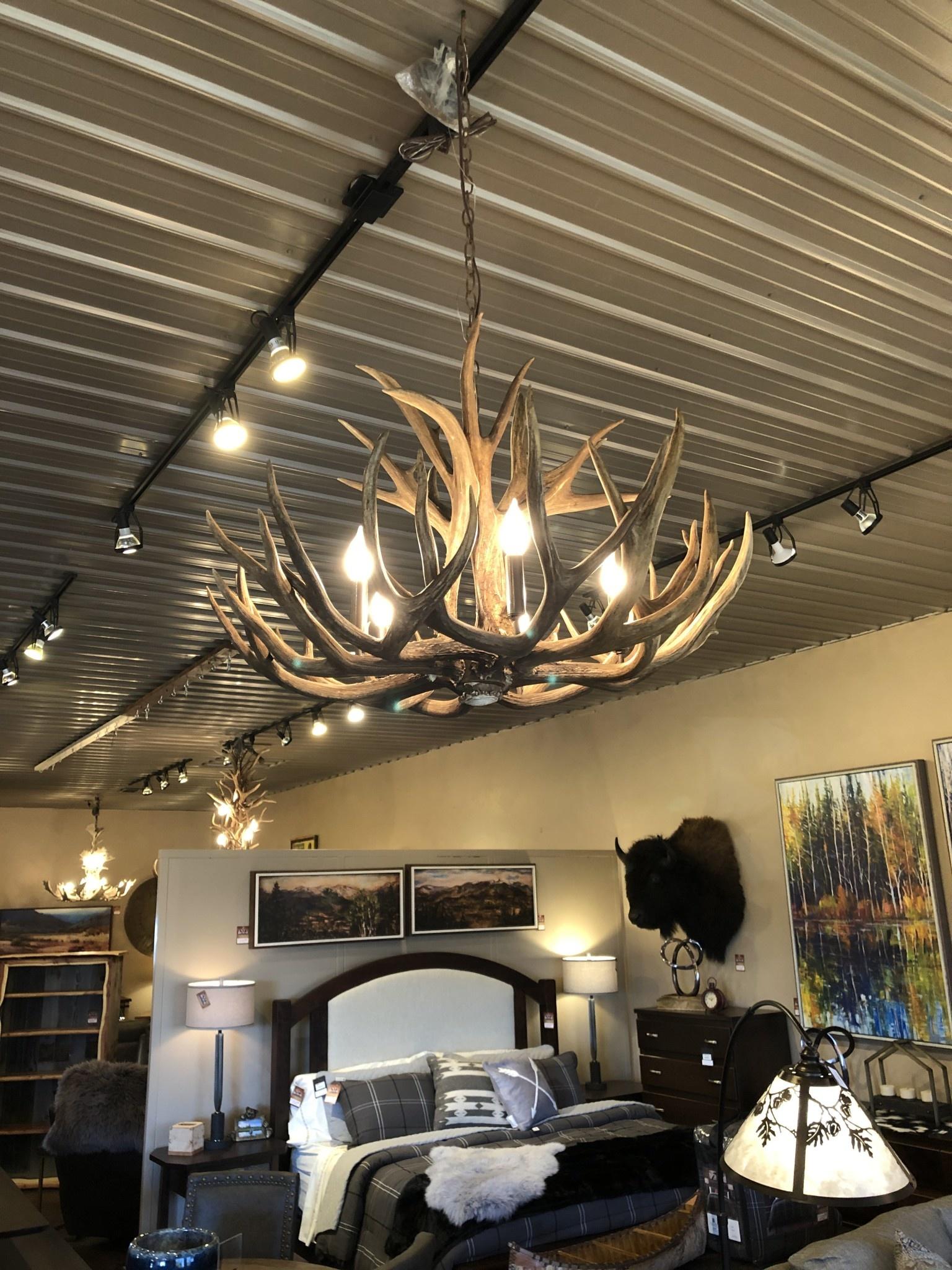 Fish Mule Deer (Full) Chandelier - 5 light