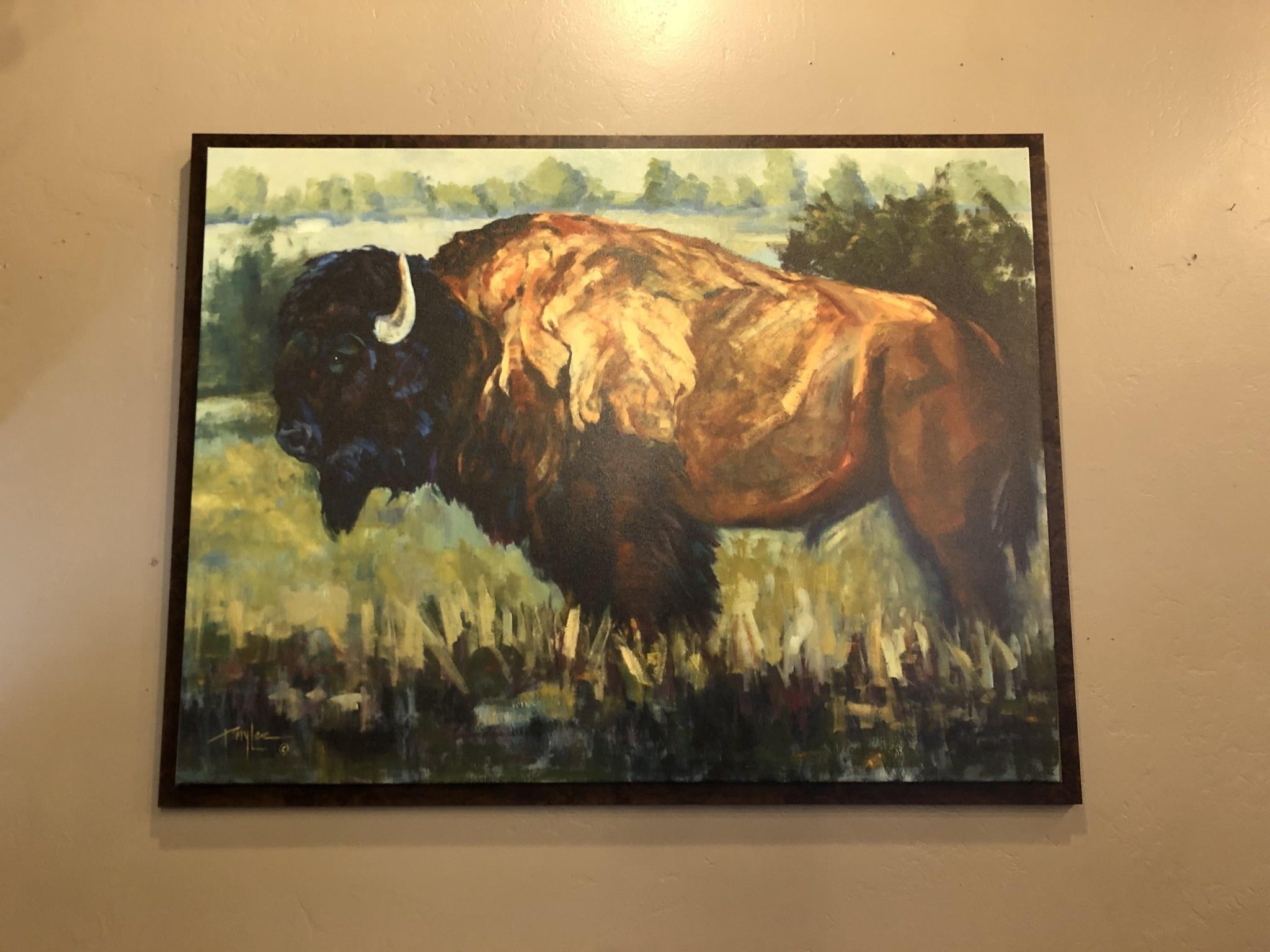 TAC Bison Bull