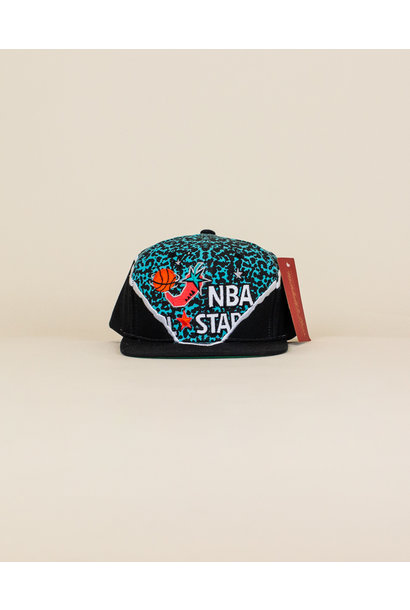 Mitchell & Ness '96 All Star Hat - Multi