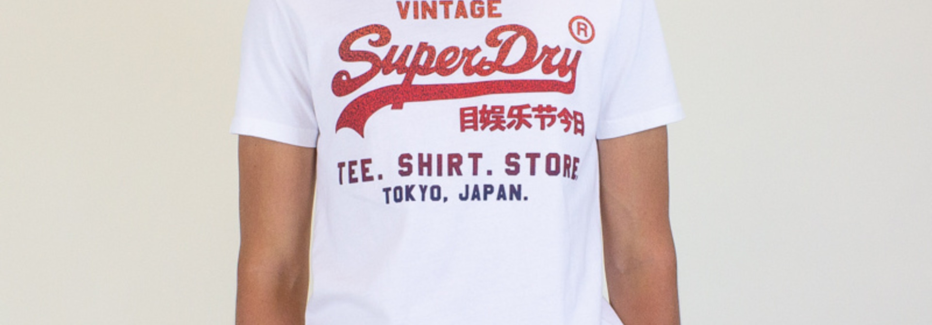 Superdry VL Fade Store Tee - Optic