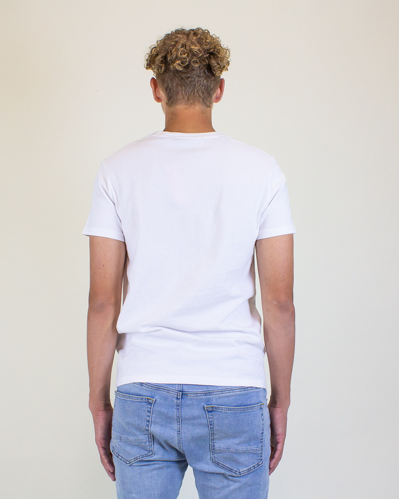 Superdry VL Fade Store Tee - Optic-2