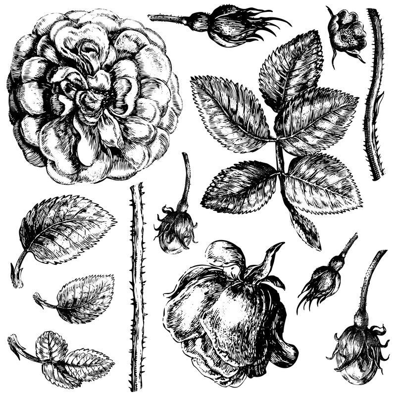 Iron Orchid Designs Lady of Shalott