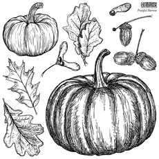 Fruitful Harvest 12x12 Stamp