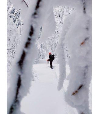 Pingora Trips Spring Snow Adventures in Colorado March 26-29