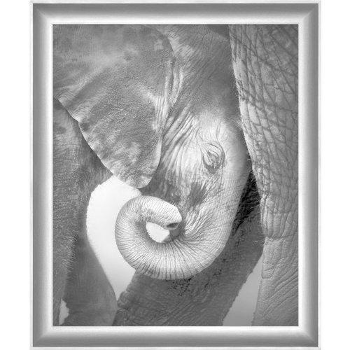 Surya Black and White Elephant Wall Art