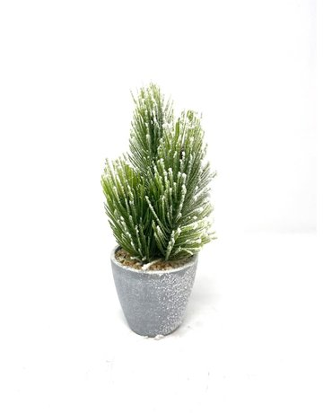 "10.5"" Faux Snowed Pine in Pot"