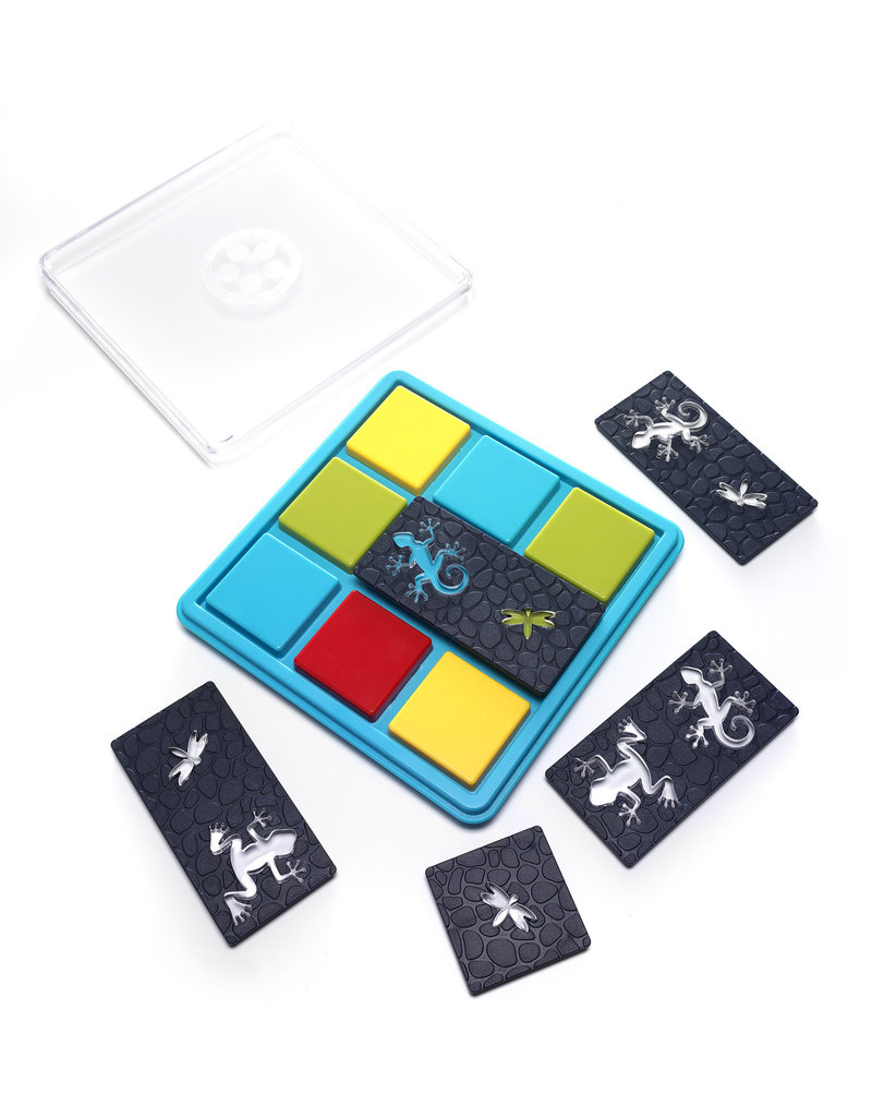 Smart Games Color Catch