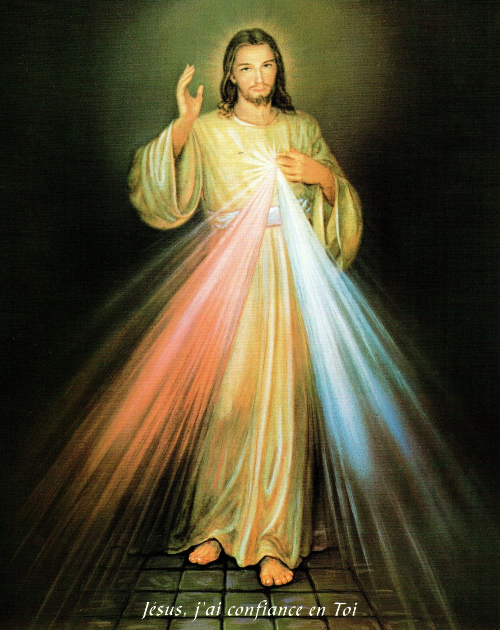 Divine Mercy Print 8x10 (French)
