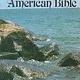 Saint Joseph Personal Size Bible (Paperback)