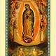 Helpless Unborn (Our Lady of Guadalupe)