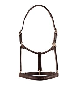 Fairhaven by Bobby's Haverhill Fancy Raised Padded Halter