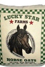 "Ox Bow Lucky Star Horse Pillow 20"" x 20"""