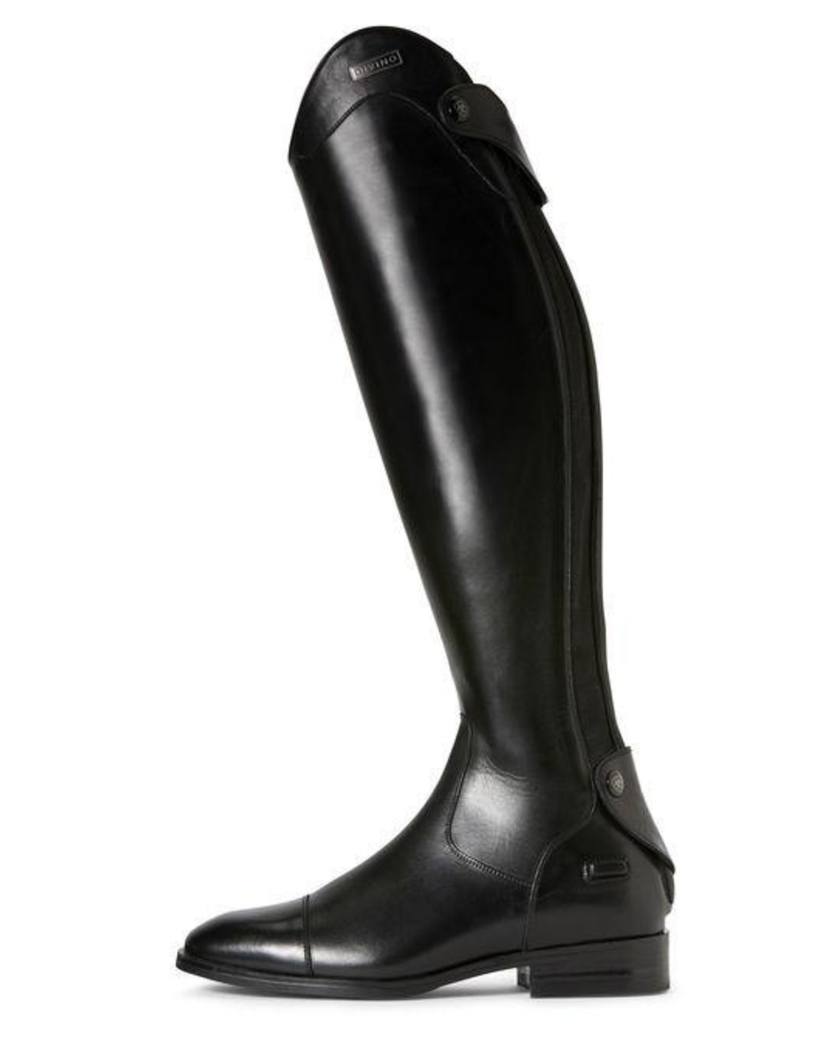 Ariat Ladies Divino Dress Tall Riding Boot