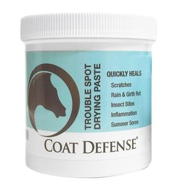 CoatDefense Coat Defense Trouble Spot Drying Paste - 10oz