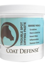 CoatDefense Coat Defense Trouble Spot Drying Paste - 24oz