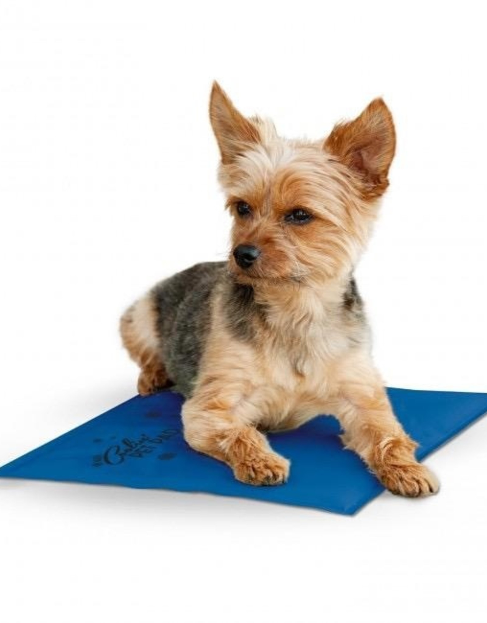 Veterinary Services Coolin' Pet Pad