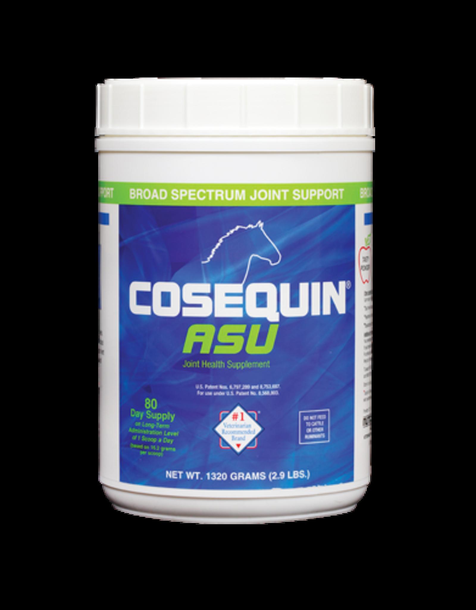 Nutramax Cosequin ASU - 1300g