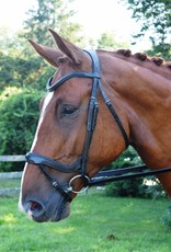 Red Barn Arena Bridle W/ Crank Nose & Flash