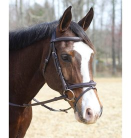 Henri De Rivel Henri de Rivel Kushy Bridle with Removable Flash