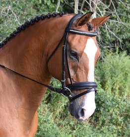Black Oak Larkspur Bridle