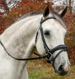 Red Barn Piaffe Dressage Bridle with Flash