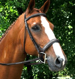 Red Barn Tryon Hunter Bridle
