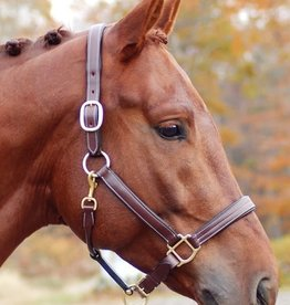 Red Barn Red Barn Lainie Triple Stitched Padded Leather Halter