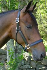 Red Barn Kelly Leather Halter with Brushed Silver