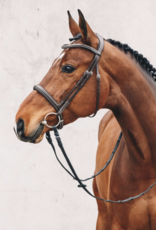 Schockemöhle Montreal Select Anatomical Headstall