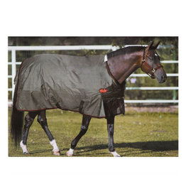 Big D Big D Sussex Light 100G Turnout Blanket