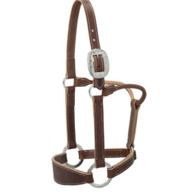 Weaver Stacy Westfall Leather Halter