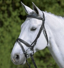 Waldhausen Diamante Bridle with Flash