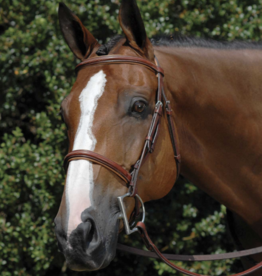 Vespucci Vespucci Fancy Padded Hunter Bridle