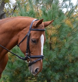 Red Barn Centerline with Crank & Flash Bridle