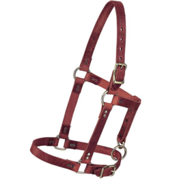 Weaver Riveted Leather Halter - Weanling
